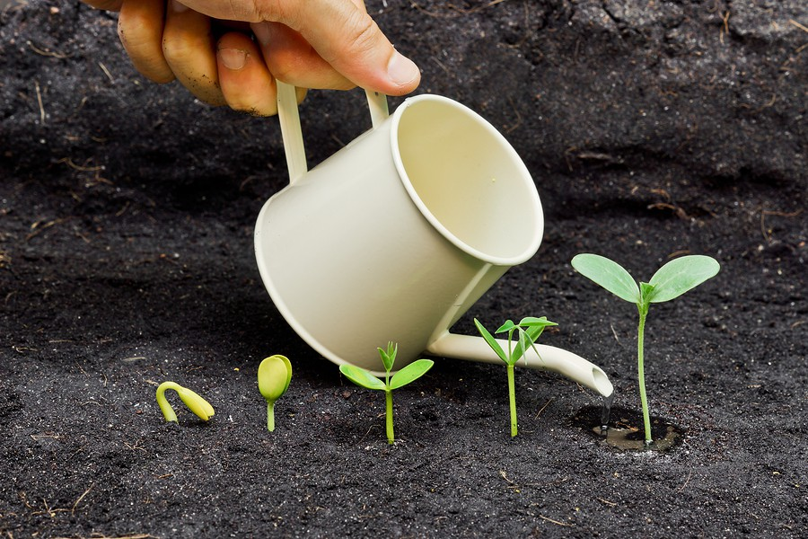 Planting Seeds Of Success To Grow Your Real Estate
