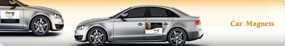 Century 21 Real Estate Car Magnets